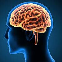 Εκπαιδεύουμε αρχικά το μυαλό και έπειτα το σώμα να κινείται και να στέκεται πιο ορθά - Pilates therapy